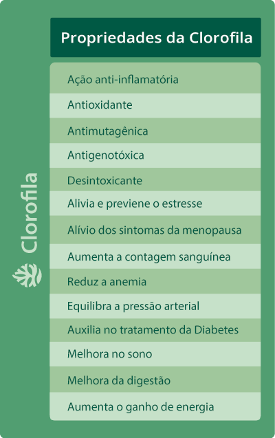 clorofila : tabela benefícios