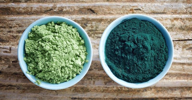 superalimentos: spirulina e chlorella