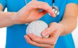 spirulina benefícios: cérebro