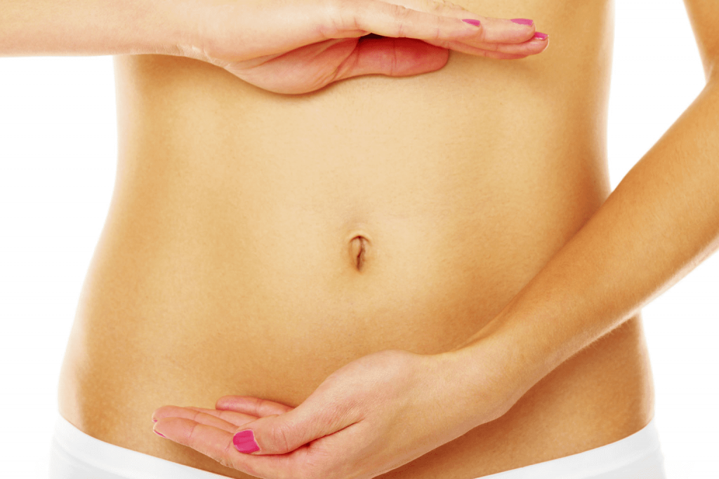 Fosfiber 6 ingredientes para um intestino saudável