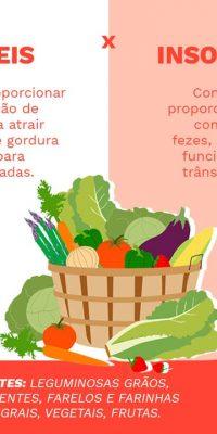 infografico alimentos ricos em fibras